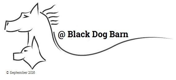 Black Dog Barn